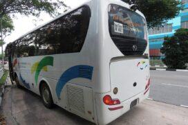 bus, bus stop, singapore